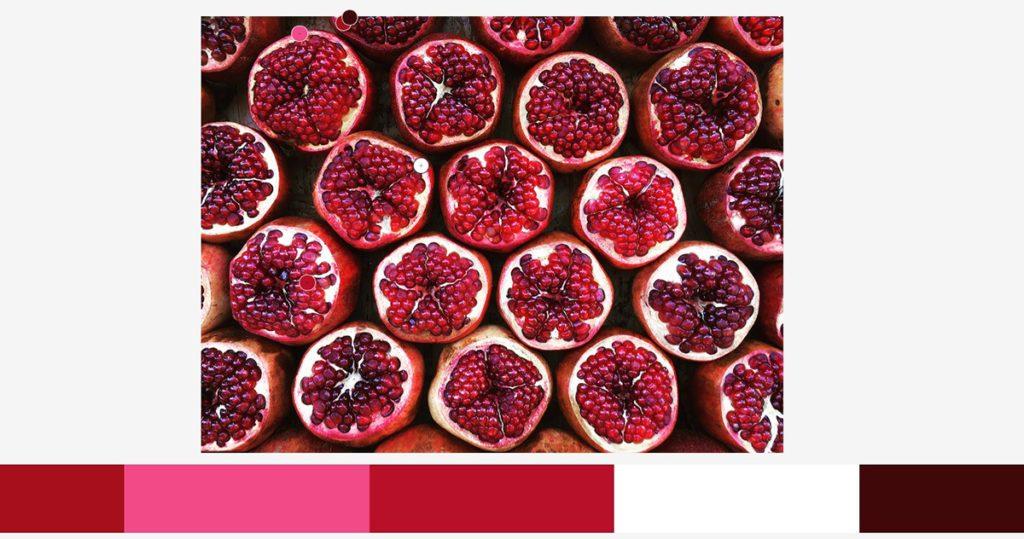 kolor w fotografii czerwony